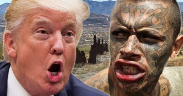 MS-13-Trump-Header-618x324